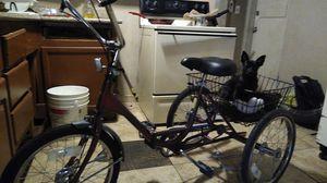 Port-O-Trike for Sale in Mesa, AZ