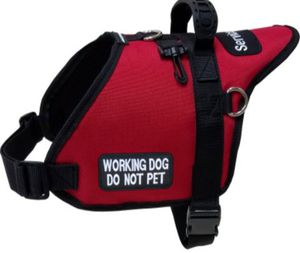Service Dog Vest for Sale in Santa Maria, CA