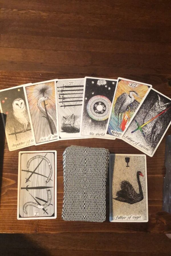 The Wild Unknown Tarot Deck and Guide Book