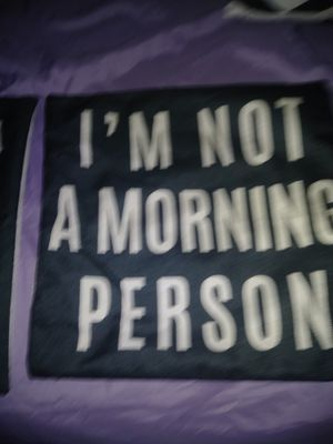 Two throw pillow case covers for Sale in Inkster, MI
