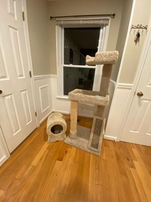 Cat tree for Sale in Richmond, VA