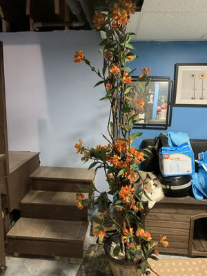 Artificial plant for Sale in Framingham, MA