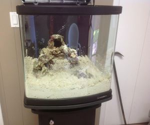 FISH TANKS - SELLING TODAY (UPDATED PHOTOS)!! for Sale in Beverly Hills, CA
