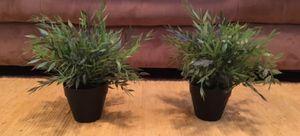 Plàstic Plants Set for Sale in Houston, TX