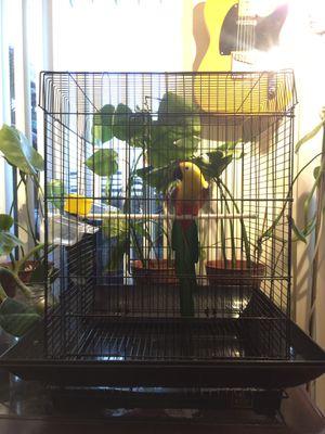 Bird Cage for Sale in Playa del Rey, CA
