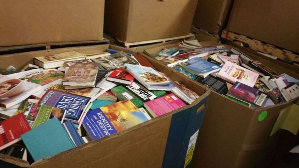 BULK BOOKS ALL YOU CAN HAUL FOR $40