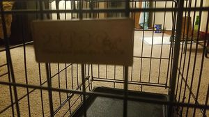 small dog crate for Sale in Pittsburgh, PA
