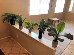 FAKE PLANTS for Sale in Henderson, NV