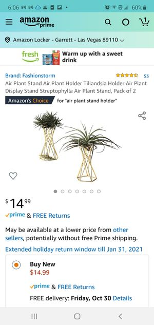 Air Plant Stand Holder for Sale in Las Vegas, NV
