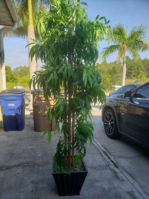 2nd artificial bamboo tree for Sale in Lehigh Acres, FL