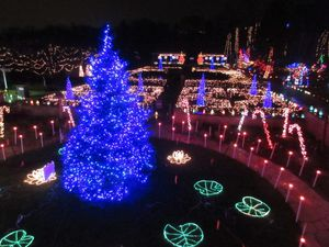 Botanical Gardens Xmas Lights Show Tickets for Sale in Norcross, GA
