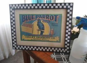 Parrot picture for Sale in Gulfport, FL