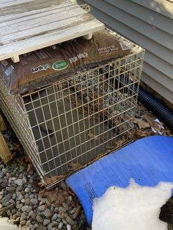Free Large Dog Cage for Sale in Mountainside,  NJ