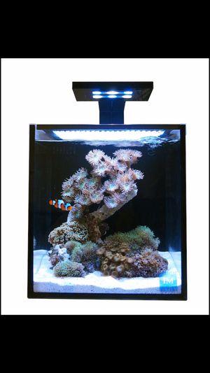 Skyye 18 aquarium clamp light for Sale in Tampa, FL