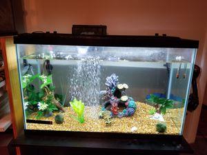 29 gallon fish tank for Sale in Orlando, FL