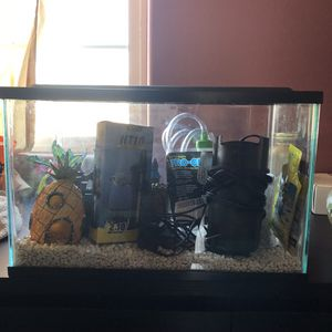 5 Gallon Fish Tank for Sale in South Gate, CA