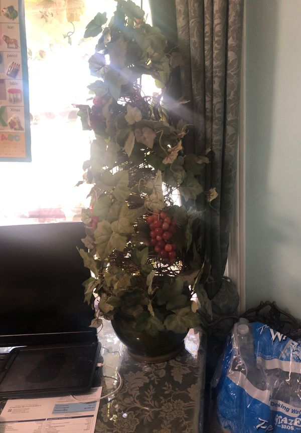Grape vine with green planter