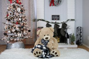 Christmas portraits service for Sale in Ontario, CA