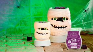 Scentsy for Sale in Tampa, FL