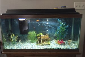 30 gallon Aquarium and Stand for Sale in Washougal, WA