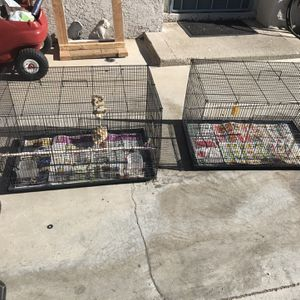 Black Bird Cages for Sale in Colton, CA