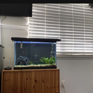 Fish tank for Sale in West Sacramento, CA