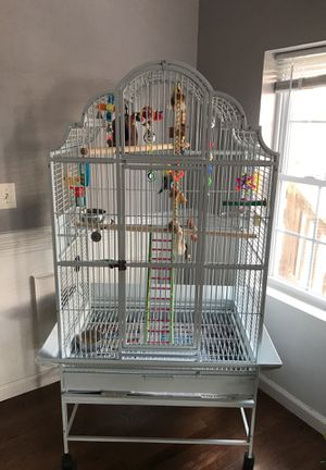 Bird Cage birds and toys included if wanted for Sale in Silver Spring, MD