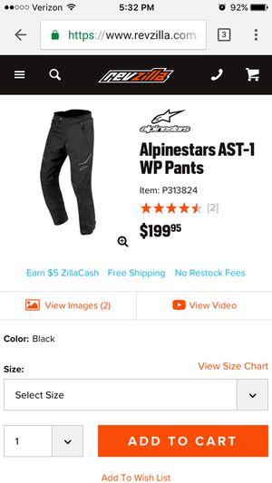 Motorcycle pants- Alpinestar pants for Sale in San Antonio, TX