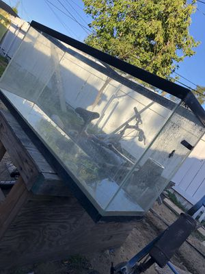 Fish tank for Sale in Bloomington, CA