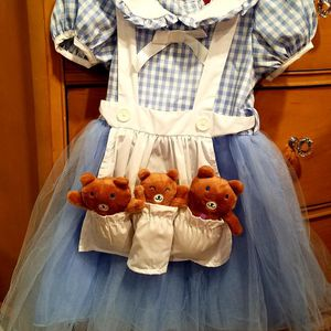 Goldilocks Costume for Sale in Levittown, PA