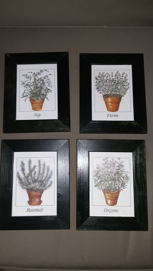 Beautiful framed herbal prints for Sale in Fort Lauderdale, FL