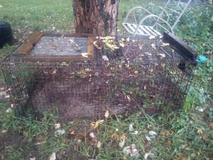 Cage for Sale in Chippewa Falls, WI