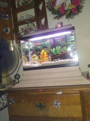 10 gallons fish tank for Sale in Murfreesboro, TN