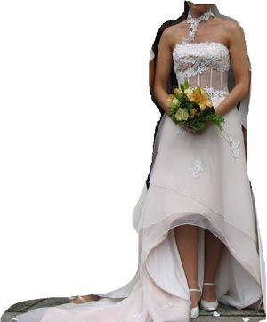 European Wedding dress (creme color) with veil/schal for Sale in Riverview, FL