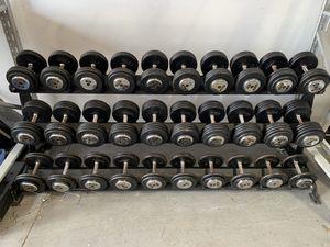 5-100 lb Troy Commercial Dumbbell Set for Sale in Davenport, FL