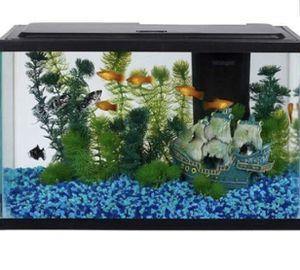 5 gallon fish tank + more for Sale in Seattle, WA