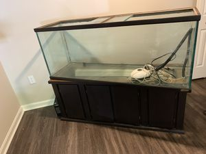 40 gallon Fish tank for Sale in Baltimore, MD