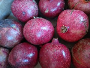 Pomergrantes for Sale in Terra Bella, CA
