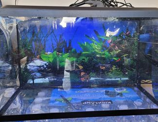 10 Gallon Aquarium Kit for Sale in Chula Vista,  CA