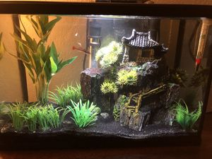 10 gallon fish tank for Sale in Ontario, CA