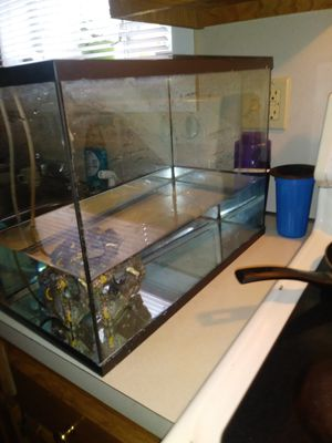 10 gallon tank, with hood and miscellaneous items for Sale in Hartford, CT