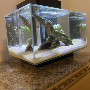 Fish Tank for Sale in Pinellas Park, FL