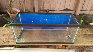 20 gallon long fish tank for Sale in Hollywood, FL