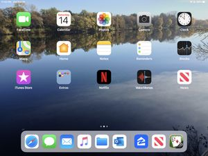 iPad Pro for Sale in Champlin, MN