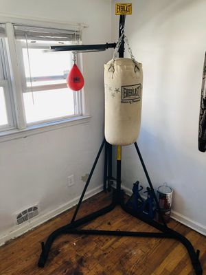 Everlast punching bag + speed bag for Sale in The Bronx, NY
