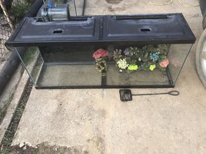 56 gallon fish tank for Sale in Middle River, MD