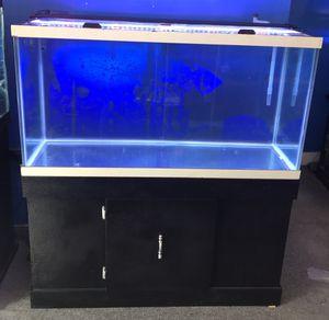 90 gallon aquarium fish tank complete $500 for Sale in Philadelphia, PA