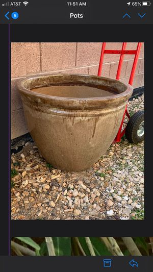 Large outdoor plant 20 high x 25 wide for Sale in Las Vegas, NV