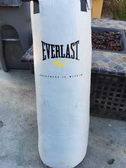 Everlast Punching Bag for Sale in West Sacramento,  CA