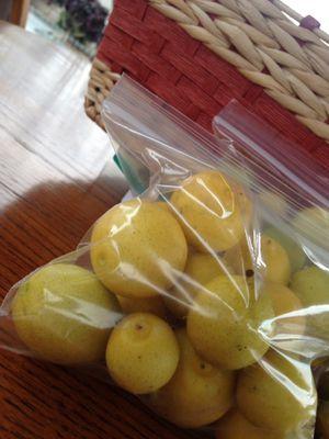 Limones de casa for Sale in Salinas, CA